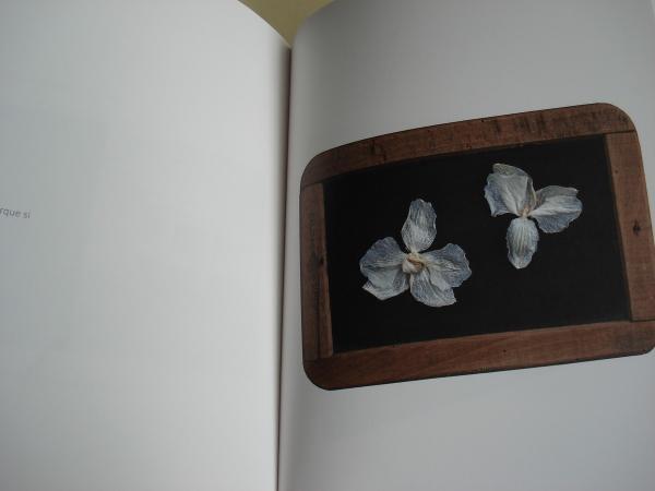 LIBROSCONVERSOS. Catálogo Exposición Museo do Pobo galego, Santiago de Compostela, abril-xuño, 2016. 41 obras plásticas para 41 poetas galegos