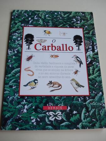 O Carballo. Despregable de 292 cm x 25 cm en carpeta ilustrada. Versión galega de M. Castro / L. Freire