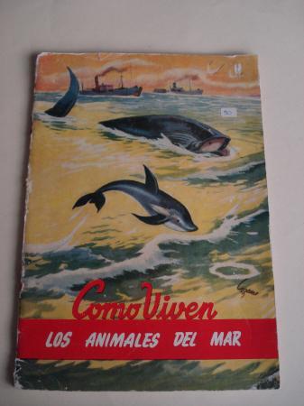 Como viven los animales del mar