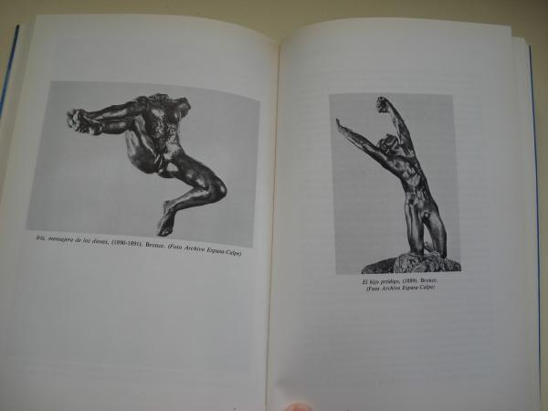 Rodin una vida apasionada
