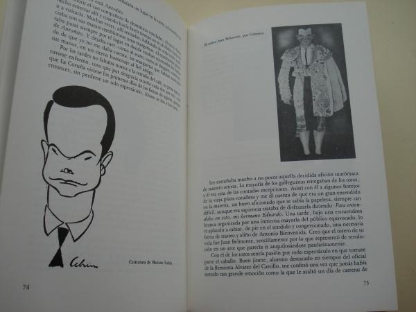 Álvaro Cebreiro (Texto en español)