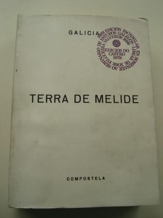 Terra de Melide (Edición facsimilar). Seminario de Estudos Galegos