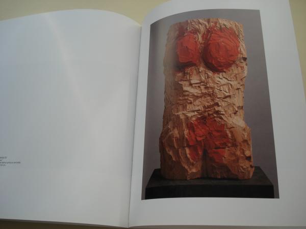ITÍNERE. CAMIÑO E CAMIÑANTES. Catálogo Exposición Centro Galego de Arte Contemporánea- CGAC, Santiago de Compostela, 1995