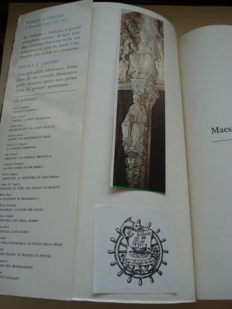 Maestro Mateo a Santiago de Compostela (Forma e colore. I grandi cicli dell´arte, nº 46)