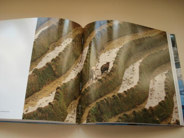 AGUA. LA SANGRE DE LA TIERRA. Fotografías en color. Catálogo exposición