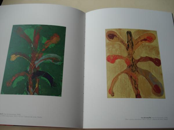DARÍO BASSO. Materialeza 1999-2011. Catálogo Exposición Museo de Pontevedra, 2012