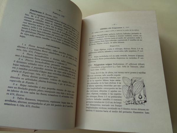 Flora descriptiva e ilustrada de Galicia. 3 tomos