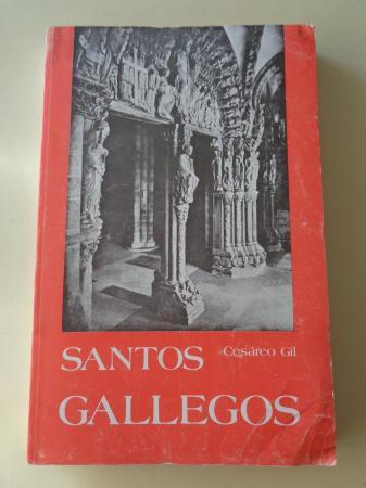 Santos gallegos