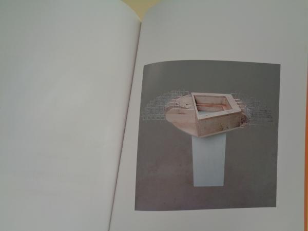 JOSÉ ANTONIO FERNÁNDEZ AMOR. Fendida a sombra sangra. Catálogo Exposición, Galicia 2004