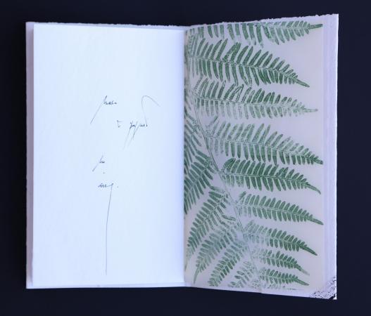 As follas da memoria | 2018 Libro de artista de exemplar único