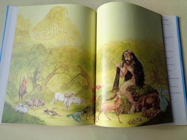 Druídas, deuses e heroes da mitoloxía celta