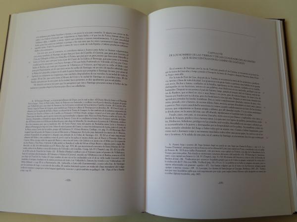 Guía del peregrino del Calixtino de Salamanca. Texto facsímil del Calixtino (BUS Ms. 2631)
