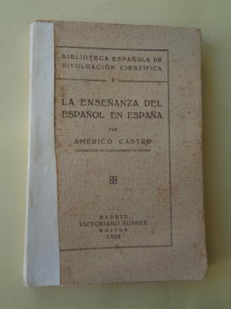 La enseñanza del español en España