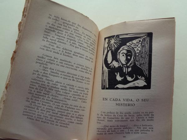 Terra brava. Contos da solaina (1ª edición)