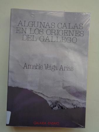 Algunas calas en los orígenes del gallego