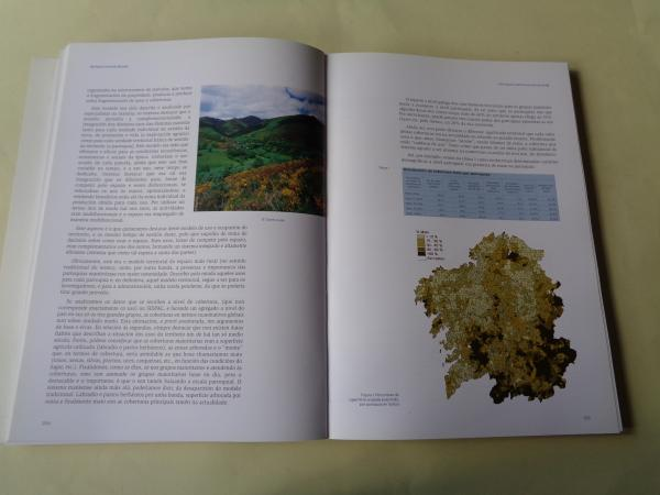 A parroquia en Galicia, pasado, presente e futuro (Con DVD, apéndice estatístico e cartográfico)