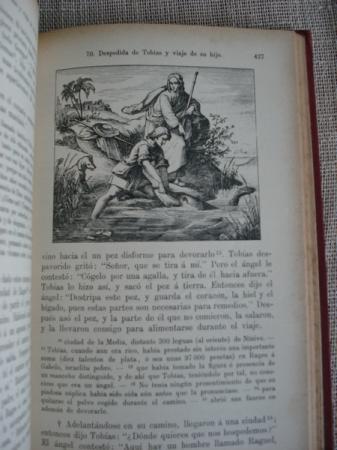Comentario de Historia Sagrada. 2 tomos