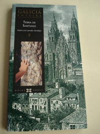 Galicia enteira. Volume 5: Terra de Santiago
