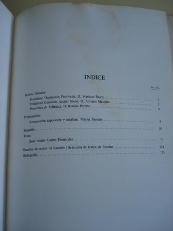 Laxeiro 1934 / 1985. VIII Bienal Nacional de Arte Diputación Provincial de Pontevedra, Pontevedra 1985