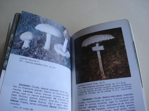Guía das setas ou cogumelos comestibles de Galicia