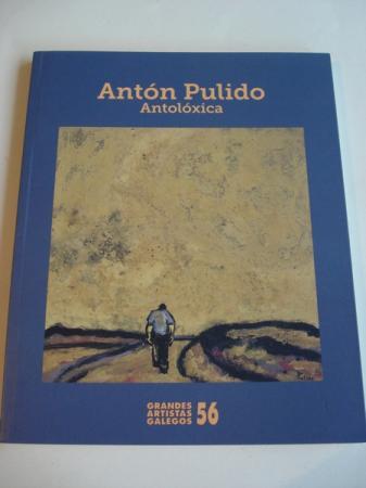 ANTÓN PULIDO. ANTOLÓXICA. Catálogo Exposición, Vigo, 2014