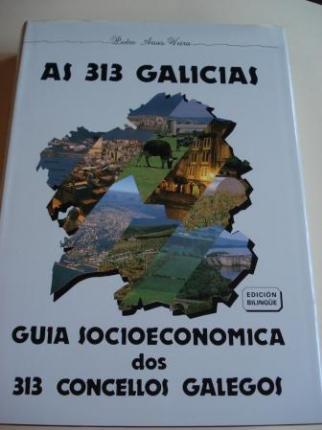 As 313 Galicias. Guía socioeconómica dos 313 concellos galegos (Edición bilingüe galego-español) - Ver os detalles do produto
