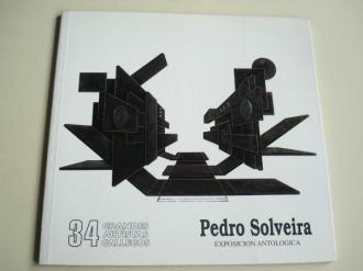 PEDRO SOLVEIRA. Exposición antológica. Catálogo Exposición Vigo, 1996. Grandes Artistas Gallegos, nº 34 - Ver os detalles do produto