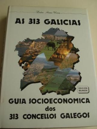 As 313 Galicias. Guía socioeconómica dos 313 concellos galegos. Edición bilingüe galego-castellano - Ver os detalles do produto