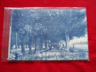 Tarxeta postal: Noia (Noya) - Alameda.  1920 - Ver os detalles do produto