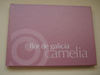 Camelia flor de Galicia - Ver os detalles do produto
