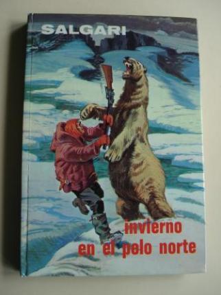 Invierno en el Polo Norte - Ver os detalles do produto