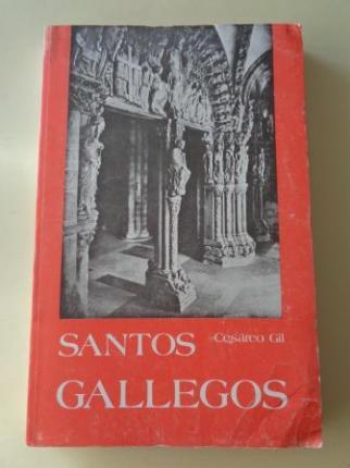 Santos gallegos - Ver os detalles do produto